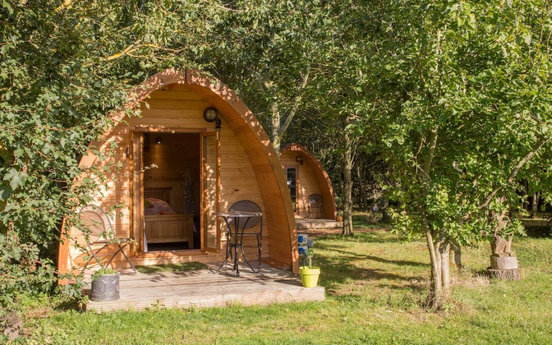 Woodland_Pods_Reopening-July20200