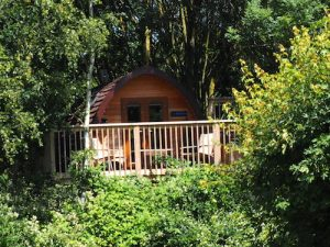 Tree-Top_Glamping_Pod